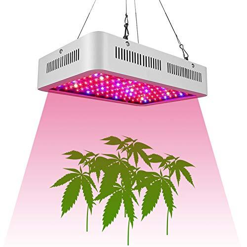 ZWCC Lampe De Croissance des Plantes 1000W Haute Puissance LED Croissance De La Serre