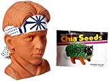 Chia Pet Karate Kid Daniel LaRusso Decorative Pottery Planter, Easy to Do and Fun to Grow