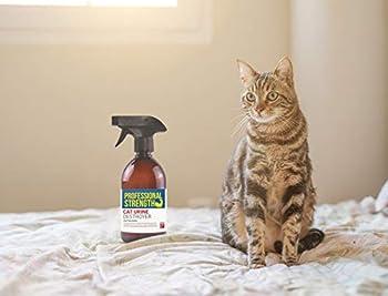 Destructeur d'urine de chat professionnel pour se débarrasser de l'odeur de l'urine de chat et prévenir le marquage futur territoire