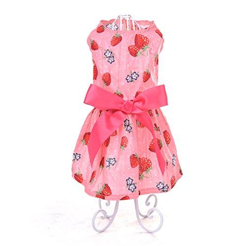 Yunt Ropa para perros bonitos con diseños de fresas y ropa para animales de compañía, para perros y gatos M