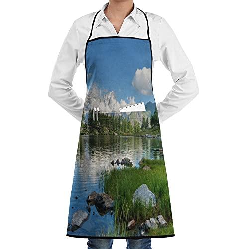 LOSNINA Delantal de cocina impermeable para hombres delantal de chef para mujeres restaurante de jardinería BBQ cocinar hornear,Vista de verano del lago Arpy cerca de La Thuile Valle de Aosta Italia