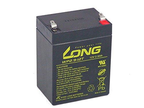 Akku kompatibel CP1229 12V 2,9Ah AGM Blei wartungsfreie auslaufsichere Batterie