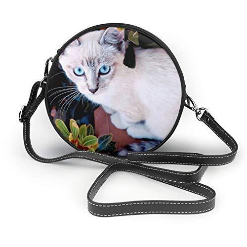 Katze Farbe Sitzen Pflanze Fensterbank Look Damen Mädchen Runde Crossbody Schultertaschen Mode Kreis Crossbody Geldbörse Clutch Handtasche