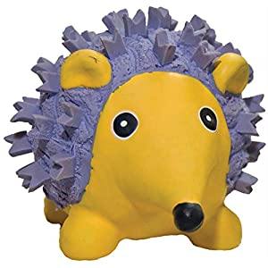 Hugglehounds Ruff-Tex Squeaky Tough Dog Chew Toy All Natural