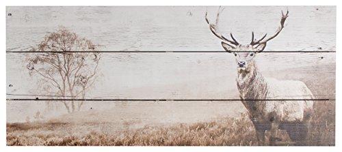 Art For The Home Stag Quadro, Nylon/a