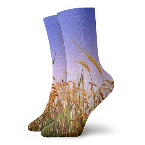 KenFandy Wheat Scenery Adult Short Socks Cotton Sports Socks for Mens Womens Yoga Hiking Cycling Running Soccer Sports