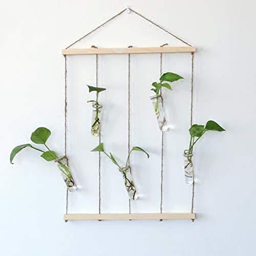 HUABEI Pots à Suspendre pour Fleur Plante Terrariums Décoration Jardin Maison Table