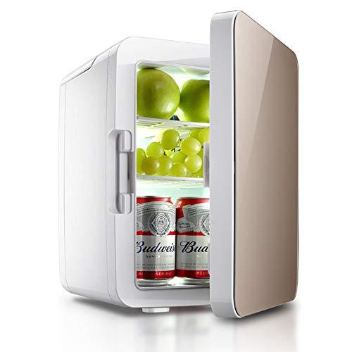FJW Car Refrigerator 10L Mini Refrigerator Dual Voltage Cool and Warm Electric Cool Box, 12V DC/220-240V AC for Car/Home/Travel/Camping,Metallic