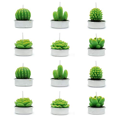 AQUEENLY Cactus Candles, 12 PCS Cactus Tealight Candles Succulent Plant Decor for Spa Birthday Party Home Decoration