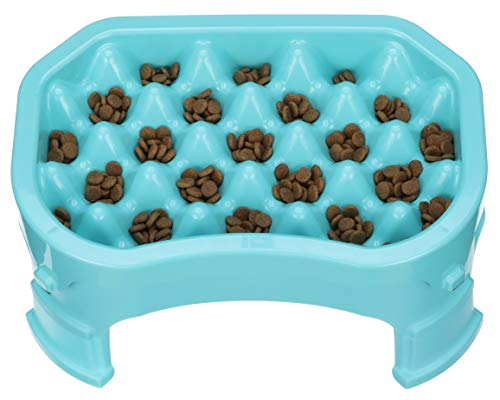 Elevated Slow Feeder Bowl by Neater Pet Brands