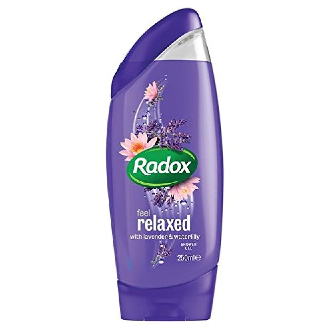 パッケージ名詞醜いはリラックスシャワージェル250ミリリットルを感じます x4 - Radox Feel Relaxed Shower Gel 250ml (Pack of 4) [並行輸入品]