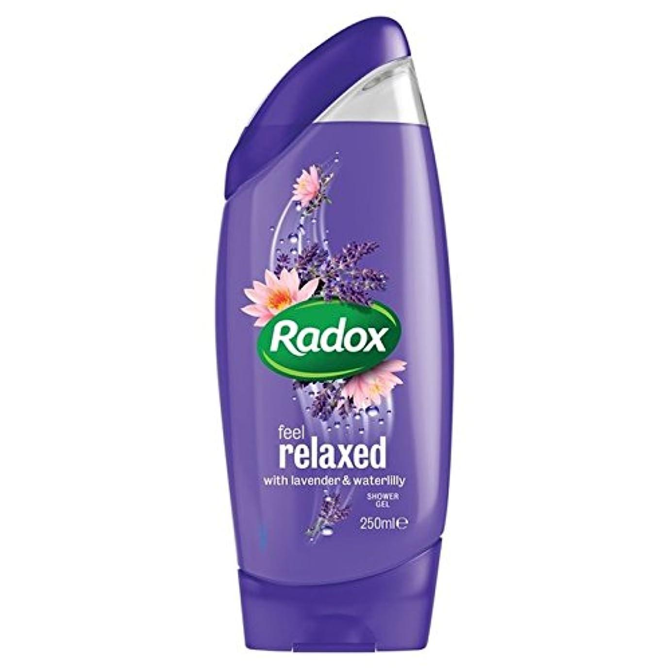 蓮委任学校教育はリラックスシャワージェル250ミリリットルを感じます x4 - Radox Feel Relaxed Shower Gel 250ml (Pack of 4) [並行輸入品]