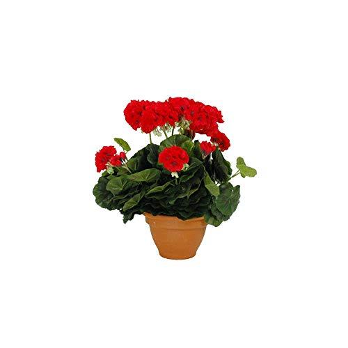 Mica decorations 947281 bloemen, geranium groot, rood