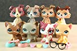 KK lps Shorthair Cat and Collie Lot, lps Cats and Dogs 1170 391 339 2291 1262 67 893 58 with lps Accessories Lot
