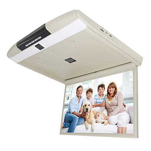 CAPTIANKN Flip Coche Pantalla para Todos los Modelos de 17,3 Pulgadas LCD...