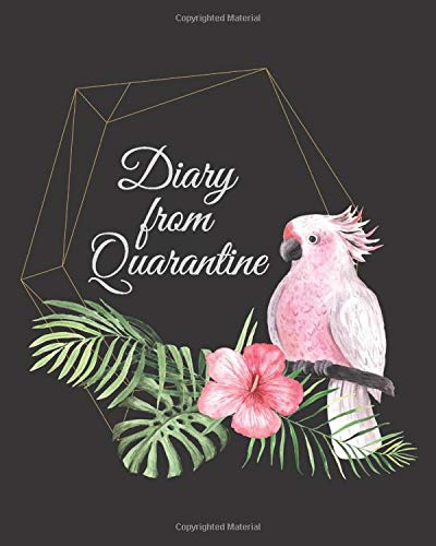 Diary from Quarantine