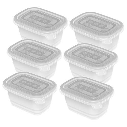 Rotho Freeze 6er-Set Gefrierboxen 0,25l mit Deckel, Kunststoff (PP) BPA-frei, transparent, 6 x 0,25l (11,2 x 7,8 x 13,2 cm)