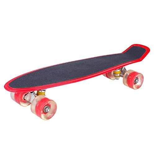 Eternitry 22-Zoll Frosted Cruiser Kinder-Skateboard mit LED-Leuchträdern Allrad-Skateboard mit kleinem Fischbrett, sehr geeignet für Jugendliche und Kinder