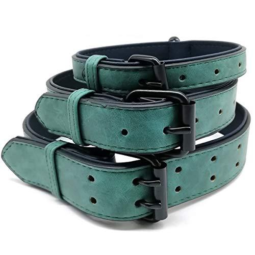 Mycicy Hundehalsband aus Leder, weich, für kleine und mittelgroße Hunde, 6 Farben, Verstellbarer Halsumfang 27–58 cm
