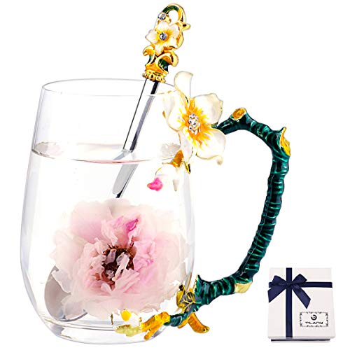 TILANY Enamel Tea Cup Coffee Mug Set With Spoon & Coaster - Beautiful Cappuccino Latte Cups - Clear Insulated Glass Mugs For Hot/Cold Drinks - Fancy Presents For Mom wife women (Apricot Flower Tall)