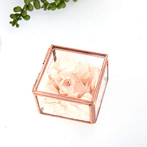 Feyarl - Caja de cristal para joyería (tamaño pequeño),