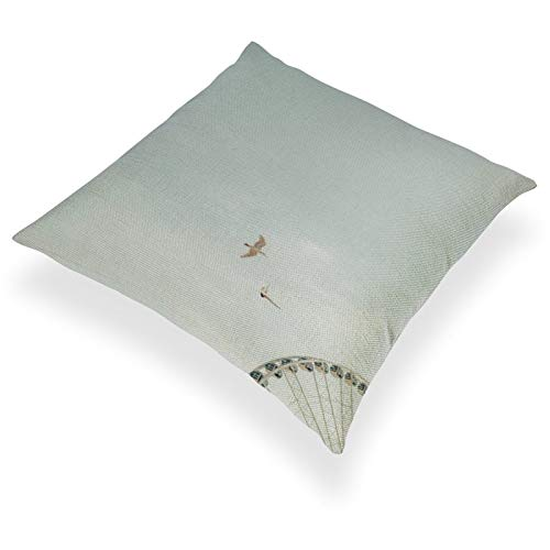 DKE&YMQ Funda de almohada de lino de algodn ligero, individual, diseo de pjaros, avin, avin, avin, avin, fenmeno atmosfrico, plumas de rueda de la noria