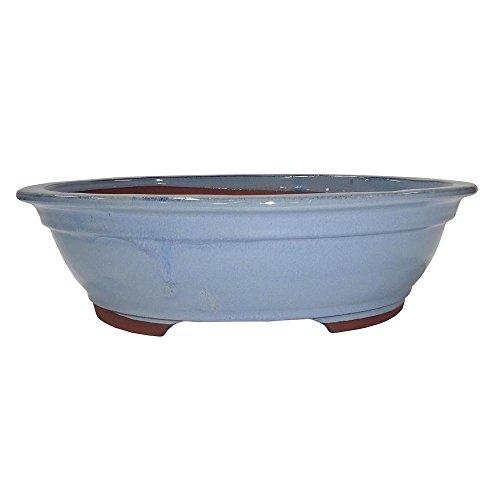 Brussel's 14' Oval Bonsai Glazed Ceramic Pot (XX-Large, Blue Grey)