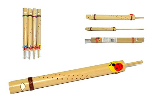Fischietto in legno di bambù con COCCINELLA della fortuna cinguettio uccello, flauto a coulisse lungo 18 cm