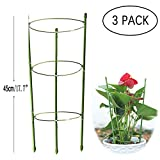 3 Pack Garden Plant Support Anello Large Size Garden Trellis Flower Supporto in Acciaio In...