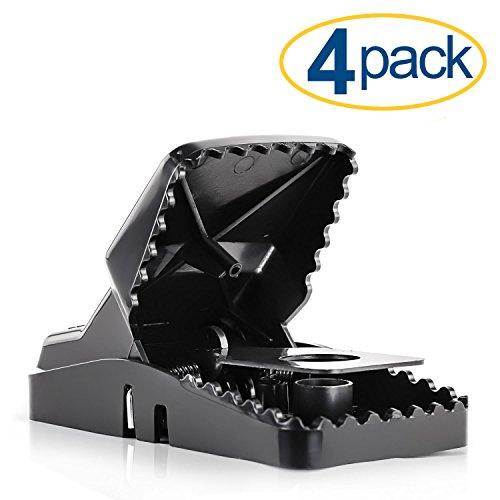 Large Powerful Rat Traps (4 Pack) - Kills Instantly with Powerful Steel Spring - Setup in Seconds - Wash & Reuse Over & Over - Hands Free Disposal - Rat Control without Harmful Poisons or Chemicals