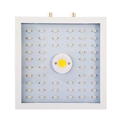 LED-lamp voor tuinbouw, LED, 1100 W, fabriekslamp, instelbaar spectrum, grow lights voor kamerplanten