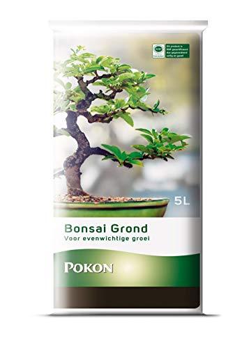 Pokon Bonsai-Erde 5 Liter