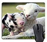 Wknoon Lamb and Piglet - Pig Goat Together On The Grassland Gaming Mouse Pad