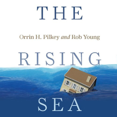 The Rising Sea cover art