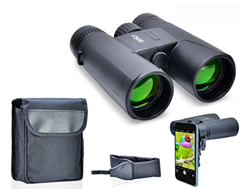 Best Optics Binoculars for Adults and Kids - 10x42 Lightweight, Compact and Professional Binocular with BAK4 Prism Lenses - Perfect for Bird Watching, Hunting and Concerts (Black)