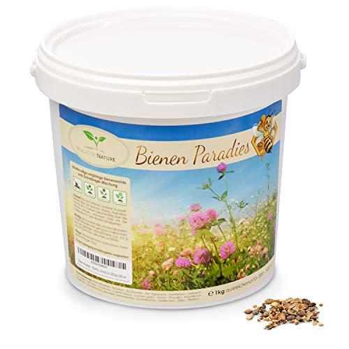 Magic of Nature Blumensamen Mischung - Bienen Paradies - 1kg - Kinderleichte Anwendung - Blühfreudige Bienenweide - Aussaat-Tipps - Für 300 bis 500 m²