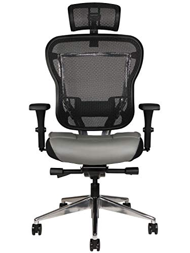 Oak Hollow Furniture Aloria Series Office Chair Ergonomic Executive Computer Chair with Headrest, Genuine Leather Seat Cushion, Mesh Back, Adjustable Lumbar Support Swivel and Tilt High-Back (Gray)