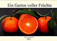 Ein Garten voller Fruechte (Wandkalender 2022 DIN A2 quer): Leuchtent buntes Obst und Gemuese auf dunklem Hintergrund (Monatskalender, 14 Seiten )