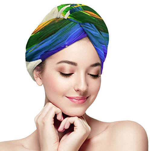 Heart Shaped Gays Lesbians LGBT Pride Dry Hair Cap Microfibre Hair Towel Wraps Ultra Absorbent Quick Dry Twist Turban with Button for Drying Curly Long Thick Hair 11 inch X 28 inch