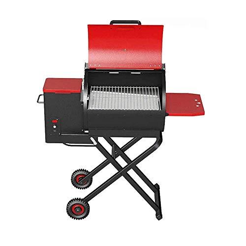 BBZZ Parrilla portátil de doble combinación de combustible/carbón de gas barbacoa al aire libre con termómetro de tapa y mesa auxiliar plegable para mesa camping jardín al aire libre