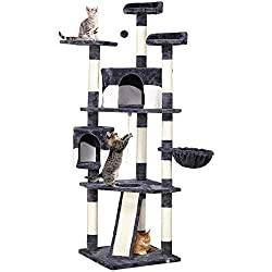Best Cat Tree for Egyptian Mau Cat