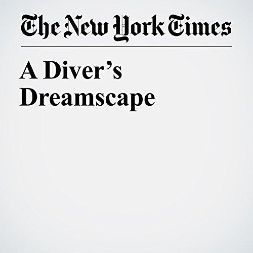 A Diver's Dreamscape copertina