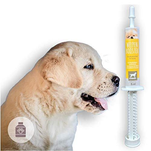 Vitaminpaste für Hunde I Welpen Aufbaupaste I Vitamin-Paste I Multi-Vitamin A C E D3 B1 B2 B6 B-Komplex I Aufbaukur Hundewelpen Junge & alte Hunde Senior I Energie Booster Wochenkur 15ml