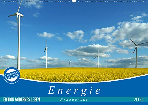 Energie - erneuerbar - Biomasse (Wandkalender 2021 DIN A2 quer)
