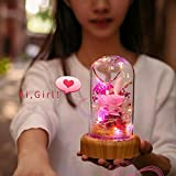 Immagine 2 bioaley luce notturna a led