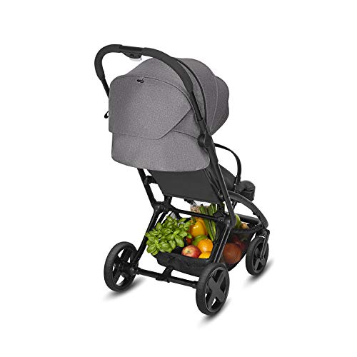 CBX Onyx Plus - Silla de paseo, incluye plástico para lluvia, desde el nacimiento hasta los 15 kg, Smoky Anthracite