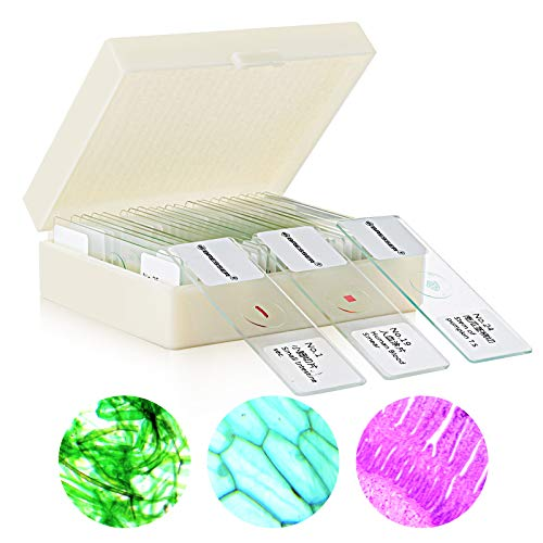 25pcs Prepared Microscope Slide Set for Basic Biological Science Education, 25 Slides Set for Kids Students Biology Nature Science Learning Home School Lab Demonstration