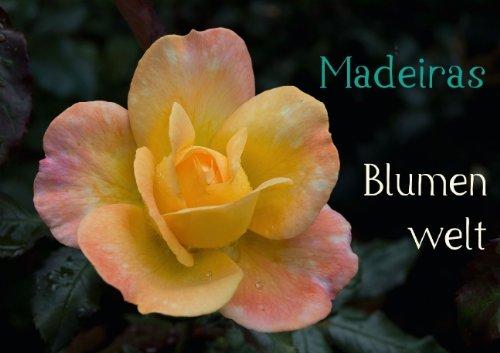 Madeiras Blumenwelt (Posterbuch DIN A2 quer)