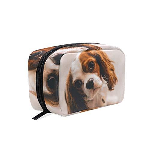 AJINGA Cavalier King Charles Spa Kosmetiktasche mit Reißverschluss, Kulturbeutel, Reisetasche, für Damen, quadratisch