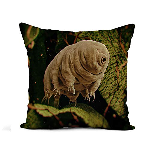 Awowee Flax Throw Pillow Cover Tardigrada Tardigrade Water Bear 3D Rendered Moss Microscope Biology 16x16 Inches Pillowcase Home Decor Square Cotton Linen Pillow Case Cushion Cover